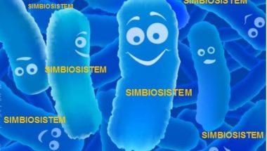 Bé uống kháng sinh bị tiêu chảy, giải pháp cực đơn giản từ men vi sinh Simbiosistem