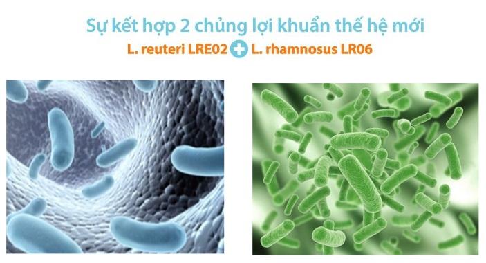 kết hợp hai chủng lợi khuẩn thế hệ mới