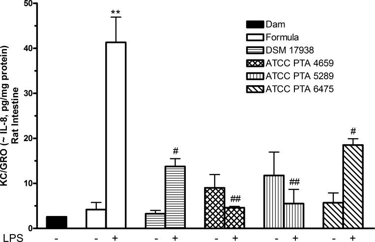Khả năng ức chế gây viêm bởi LPS của L. Reuteri